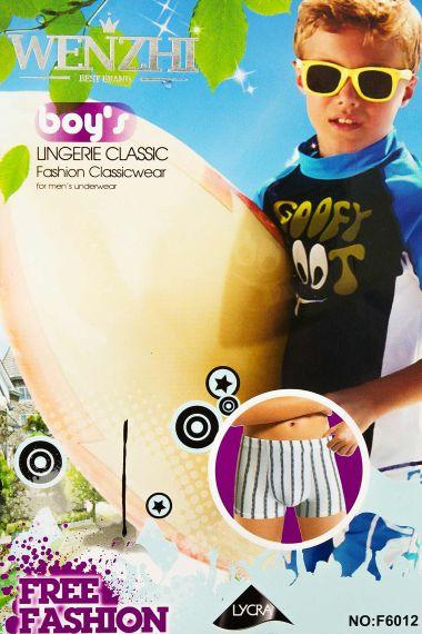 Трусы для мальчика, артикул: WZ6012 купить оптом