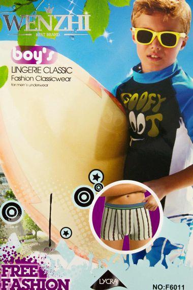 Трусы для мальчика, артикул: WZ6011 купить оптом