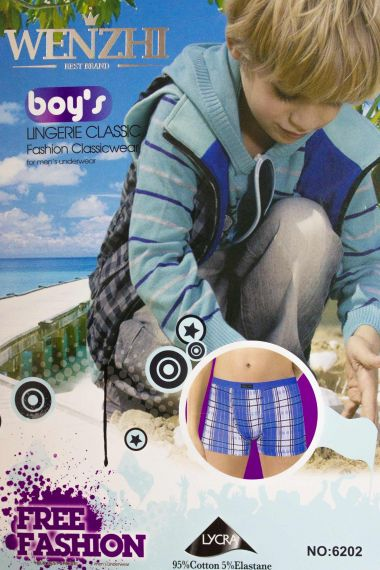 Трусы для мальчика, артикул: WZ6202 купить оптом