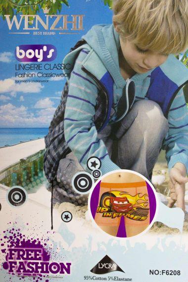 Трусы для мальчика, артикул: WZ6208 купить оптом